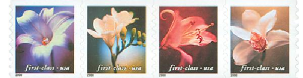 2000 34c Lilies, non-denominational, coil stamps