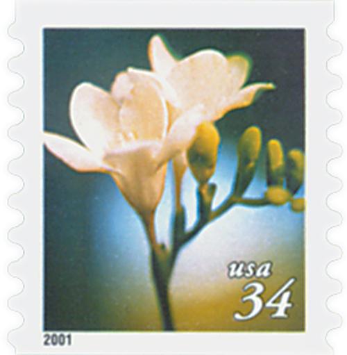 2000 34c Lilies: Freesia, coil
