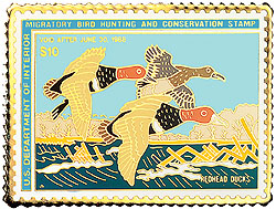 1996 1987 Federal Duck Cloisonne Medallion