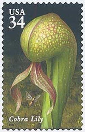 2001 34c Carnivorous Plants: Cobra Lily