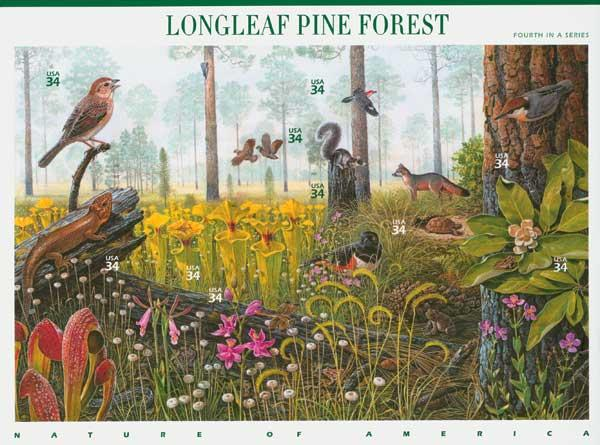 2002 34c Nature of America: Longleaf Pine Forest
