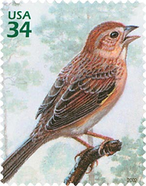 2002 34c Longleaf Pine Forest: Bachmans Sparrow