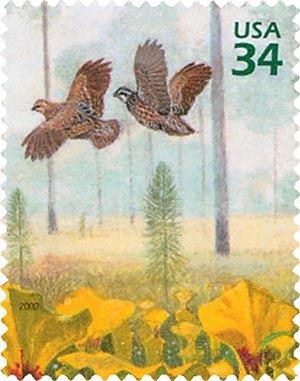 2002 34c Longleaf Pine Forest: Northern Bobwhite and Yellow Pitcher