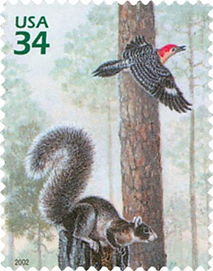 2002 34c Longleaf Pine Forest: Fox Squirrel and Woodpecker