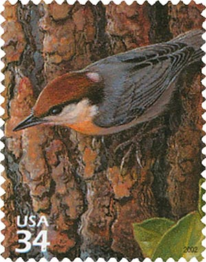 2002 34c Longleaf Pine Forest: Brown-headed Nuthatch