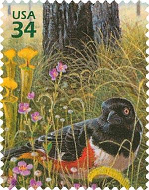 2002 34c Longleaf Pine Forest: Eastern Towhee