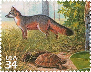 2002 34c Longleaf Pine Forest: Gray Fox and Gopher Tortoise
