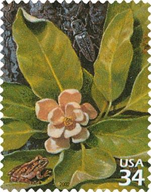 2002 34c Longleaf Pine Forest: Blind Click Beele and Tree Frog