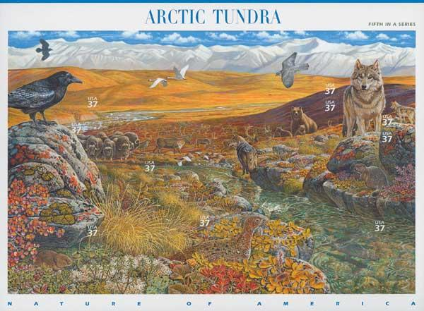 2003 37c Nature of America: Arctic Tundra