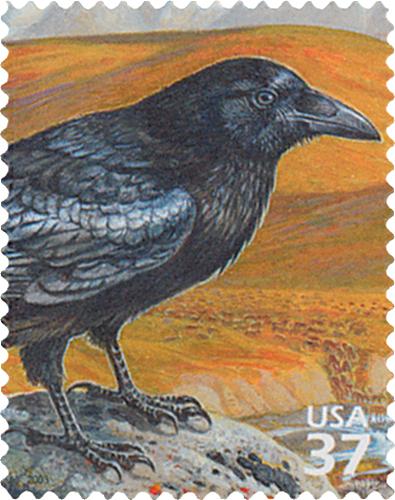 2003 37c Arctic Tundra: Common Raven