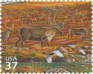2003 37c Arctic Tundra: Caribou