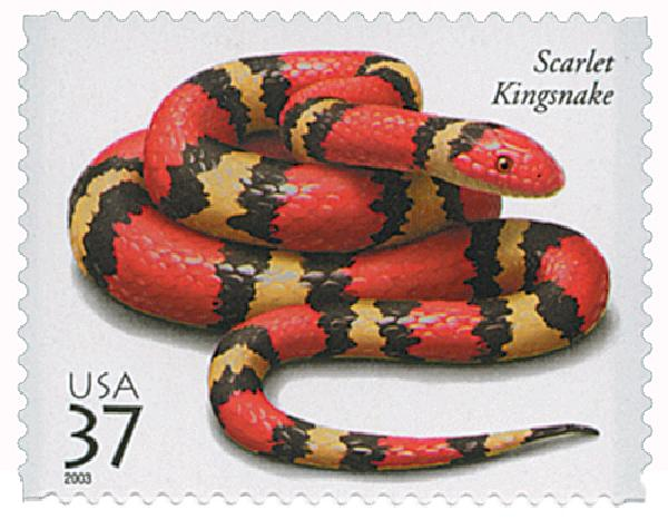 2003 37c Reptiles and Amphibians: Scarlet Kingsnake