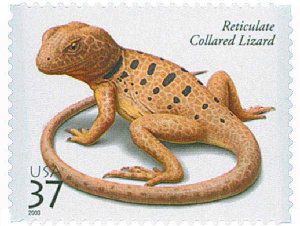 2003 37c Reptiles and Amphibians: Reticulate Collared Lizard