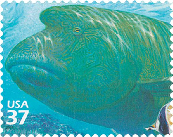 2004 37c Pacific Coral Reef: Humphead Wrasse