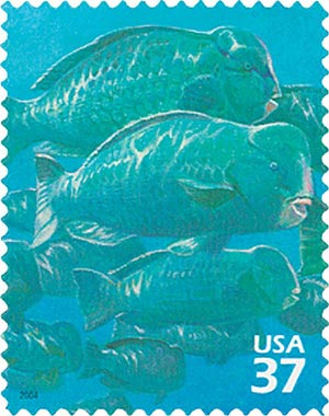 2004 37c Pacific Coral Reef: Humphead Parrotfish