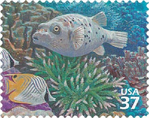 2004 37c Pacific Coral Reef: Black-spotted Puffer