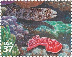2004 37c Pacific Coral Reef: Snowflake Moray Eel