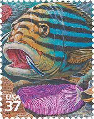 2004 37c Pacific Coral Reef: Oriental Sweetlips