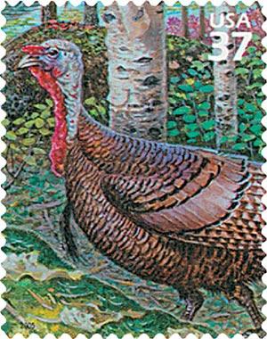 2005 37c Northeast Deciduous Forest: Wild Turkey