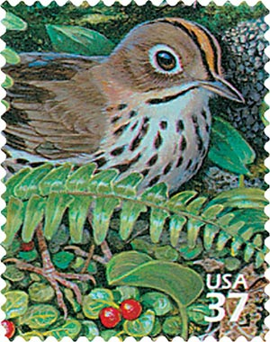 2005 37c Northeast Deciduous Forest: Ovenbird