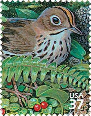 2005 37c Northeast Deciduous Forest: Ovenbird