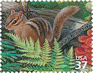 2005 37c Northeast Deciduous Forest: Eastern Chipmunk
