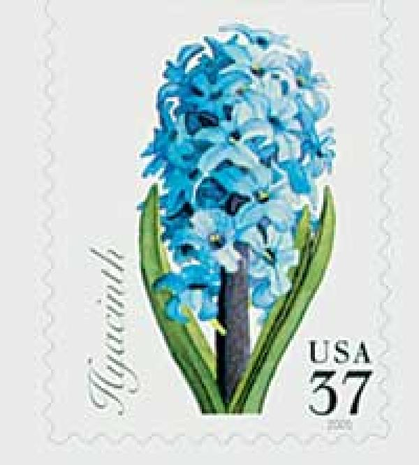 2005 37c Spring Flowers: Hyacinth