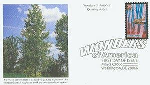 2006 39c Quaking Aspen, Largest Plant