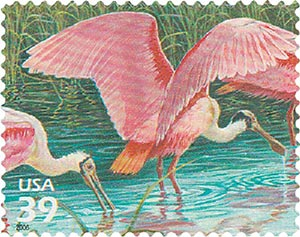 2006 39c Southern Florida Wetland: Roseate Spoonbills