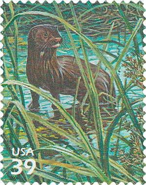 2006 39c Southern Florida Wetland: Everglades Mink