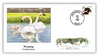 1992 Wyoming Trumpeter Swan Cover