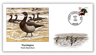 1992 Washington Pacific Black Brant Cover