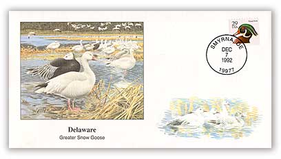 1992 Delaware Greater Snow Goose Cover