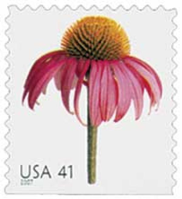 2007 41c Beautiful Blooms: Coneflower, booklet single