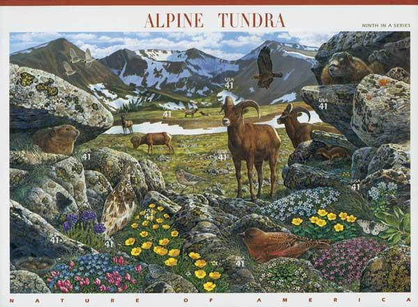 2007 41c Nature of American: Alpine Tundra