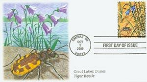 2008 42c Gr. Lakes Dunes Tiger Beetle