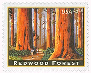 2009 $4.95 Redwood Forest, Priority Mail