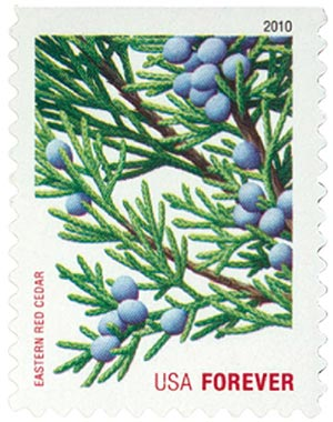 2010 First-Class Forever Stamp -  Holiday Evergreens: Eastern