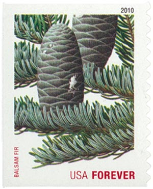 2010 First-Class Forever Stamp -  Holiday Evergreens: Balsam Fir