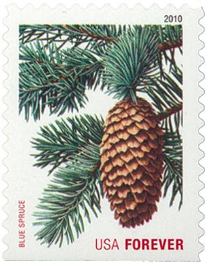 2010 First-Class Forever Stamp -  Holiday Evergreens: Blue Spruce
