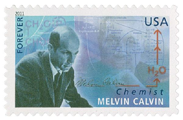 2011 First-Class Forever Stamp -  American Scientists: Melvin Calv