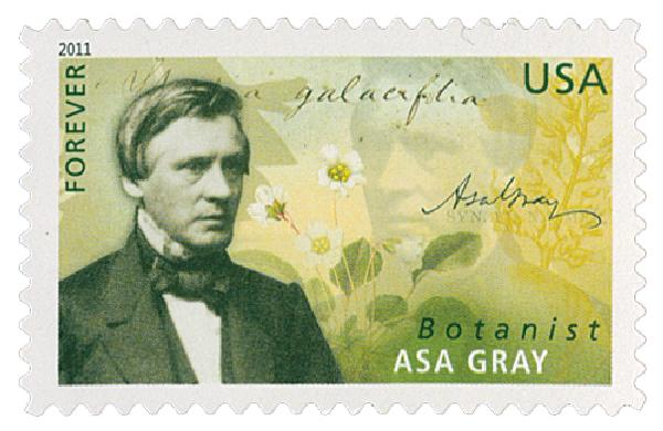 2011 First-Class Forever Stamp -  American Scientists: Asa Gray