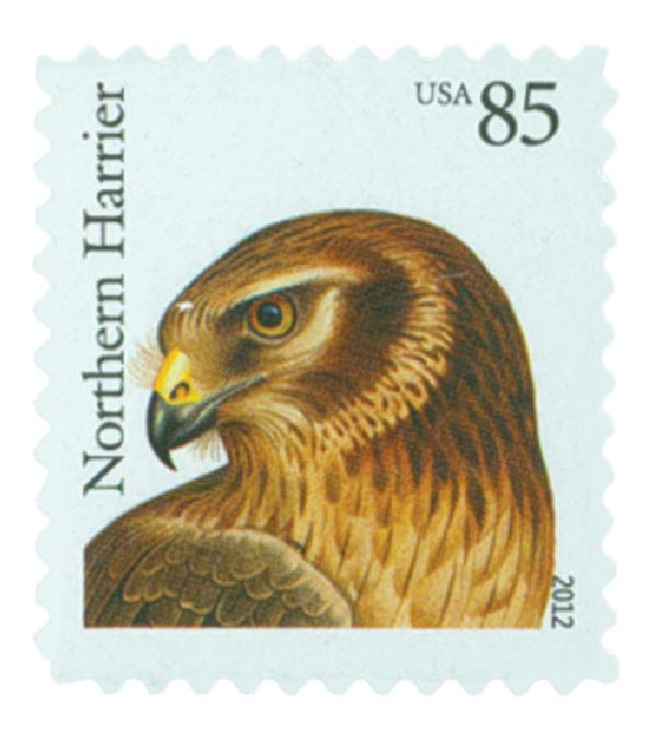 2012 85c Birds of Prey: Northern Harrier