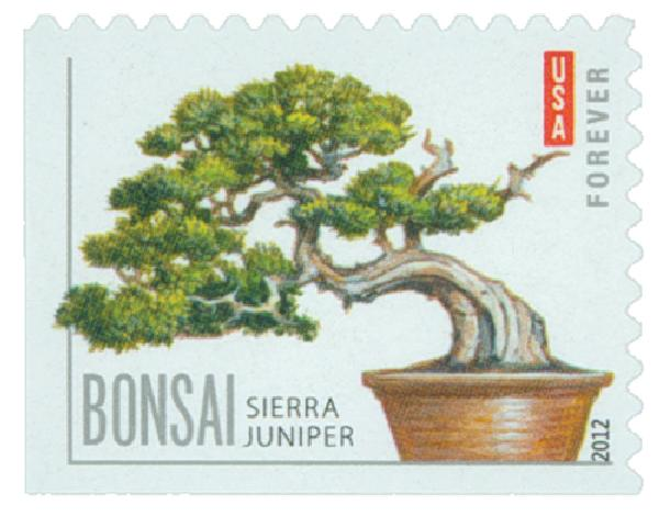 2012 First-Class Forever Stamp - Bonsai Trees: Sierra Juniper