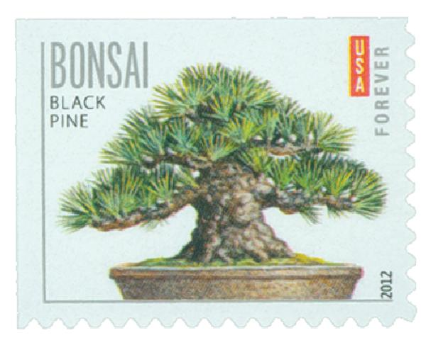 2012 First-Class Forever Stamp - Bonsai Trees: Black Pine
