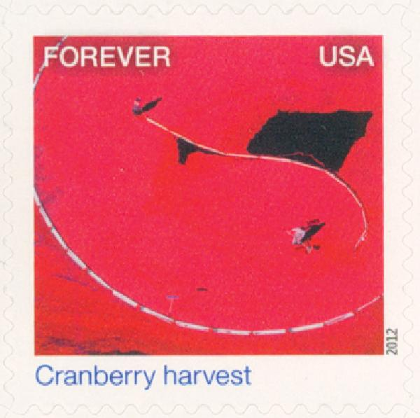 2012 First-Class Forever Stamp - Earthscapes: Cranberry Harvest