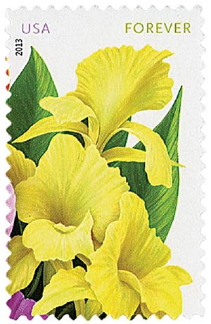 "2013 First-Class Forever Stamp - La Florida: Yellow Cannas, ""Forever"" in upper right corner"
