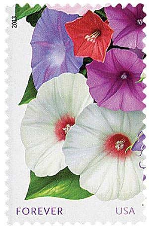 "2013 First-Class Forever Stamp - La Florida: White and Purple Morning Glories, ""Forever"" in lower left corner"