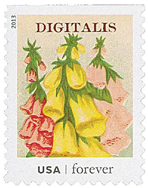2013 First-Class Forever Stamp - Vintage Seed Packets: Digitalis