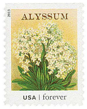 2013 First-Class Forever Stamp - Vintage Seed Packets: Alyssum